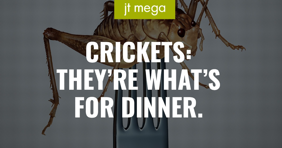 Crickets: They're What's for Dinner