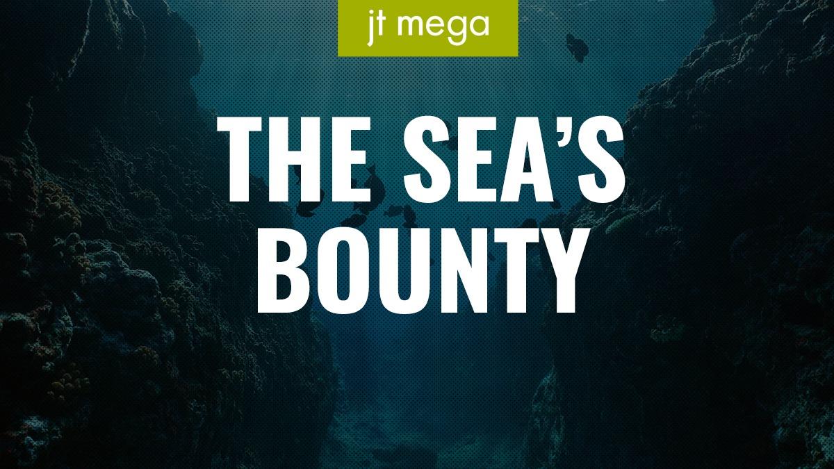The Sea's Bounty